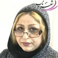 عکس شاعر مینا فتحی (آفاق)