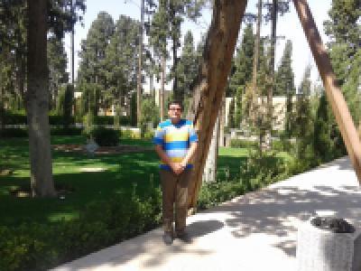عکس شاعر محمدرضا پهلوان(عرشيا)