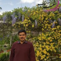 احمد ملک نژاد