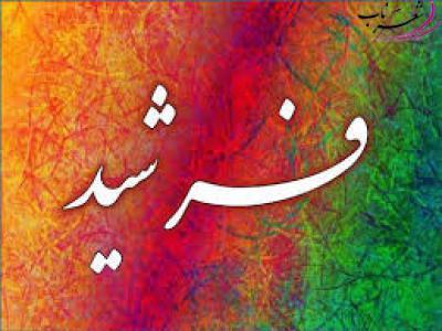 عکس شاعر فرشید پیکی نرگسی