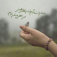 عکس شاعر سارا الهیاری