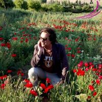 عکس شاعر حمید رفیعی راد (کوروش)