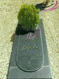 عکس شاعر سیدمحمدرضالاهیجی