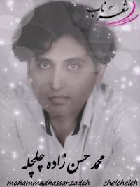 محمد حسن زاده چلچله