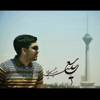 عکس شاعر سعید بیگلویی سین الف همزاد